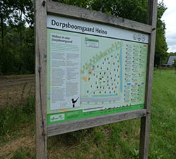 Dorpsboomgaard Heino
