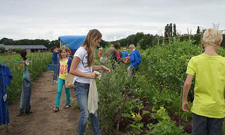 Schooltuin Duurzaam Heino