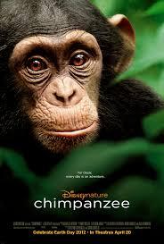 Film voor de Jeugd Chimpanzee